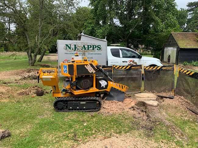 stump grinding shepway img